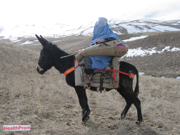Donkey Ambulance in Afghanistan